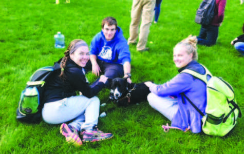 BWise Dog Day Helps Students Adjust to College