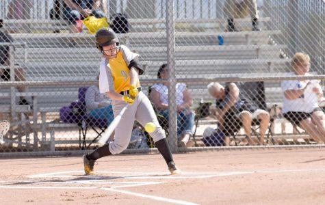 Jackets softball start season atop OAC